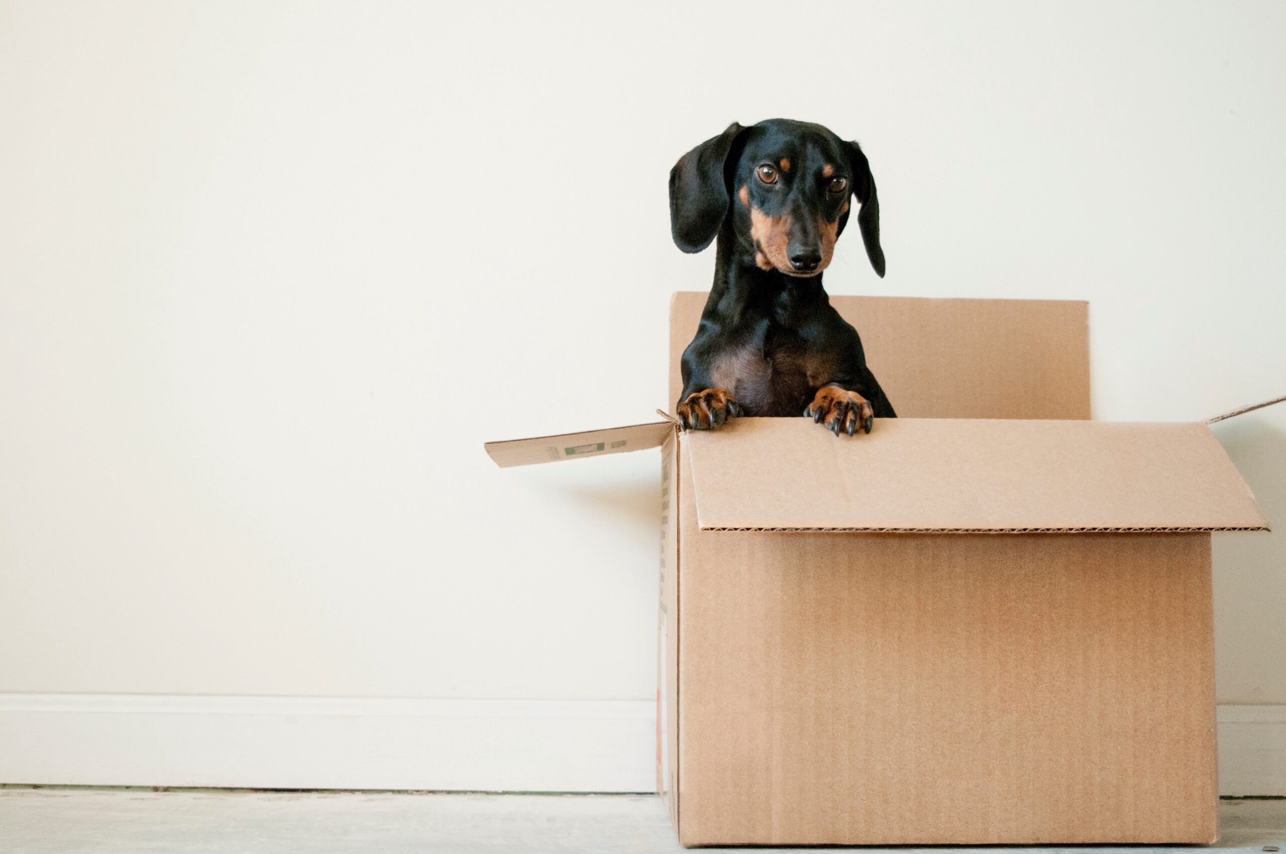 Why moving in the middle of a week can save your money?